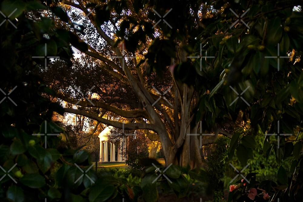 Winter Afternoon in Fitzroy Gardens, Melbourne, Australia by haymelter