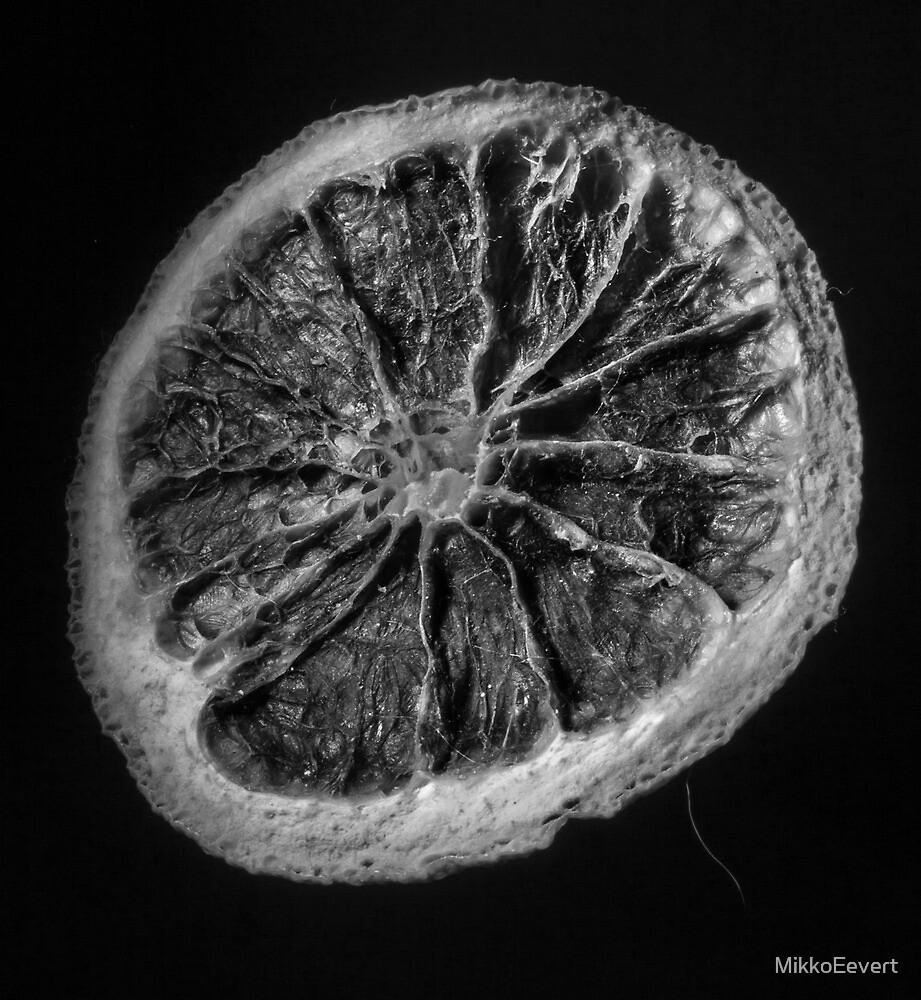 Citrus sinensis II by MikkoEevert