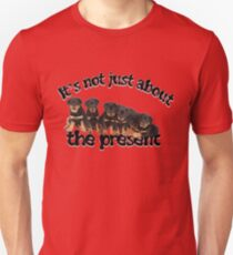 It's Not Just About The Present, Dog Not Toy Message T-Shirt