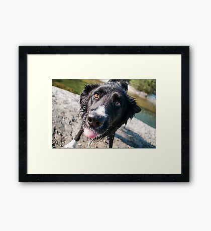 In your face Framed Print