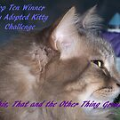 Banner for Top Ten Winner - My Adopted Kitty by quiltmaker