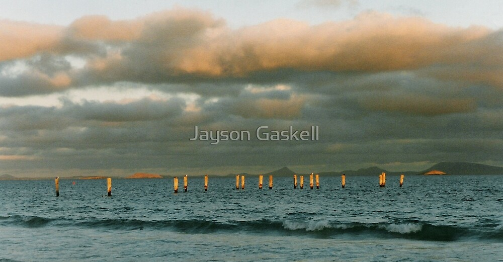 Golden rods by Jayson Gaskell