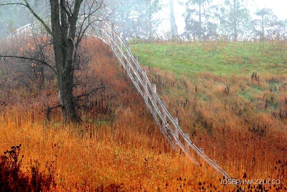 country canvas.. by JOSEPHMAZZUCCO