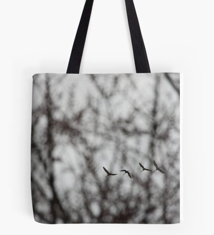 Sandhill Cranes in Whitefish Bay Wisconsin Tote Bag