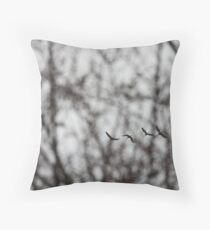 Sandhill Cranes in Whitefish Bay Wisconsin Throw Pillow