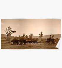 Mustering Poster