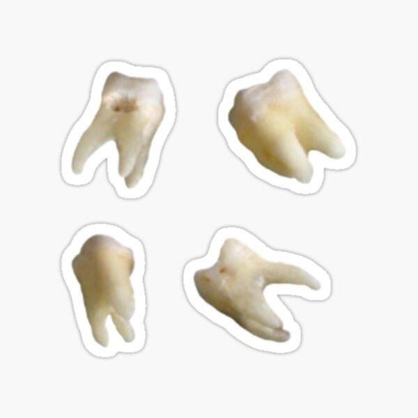 teeth sticker pack (4) Sticker