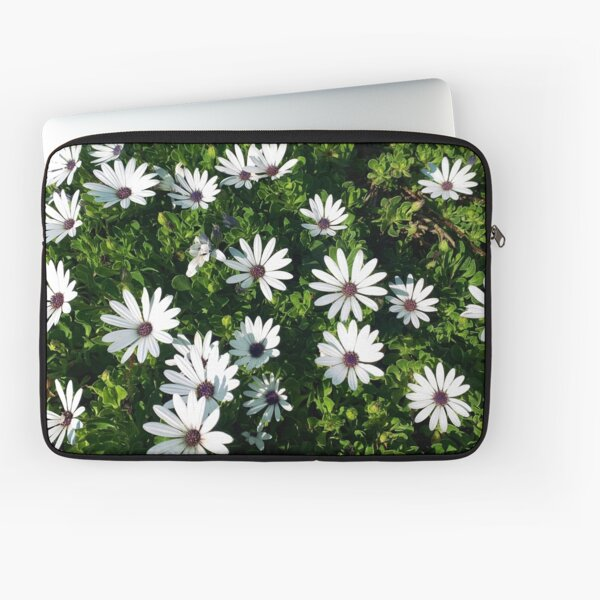 White African Daisies Laptop Sleeve