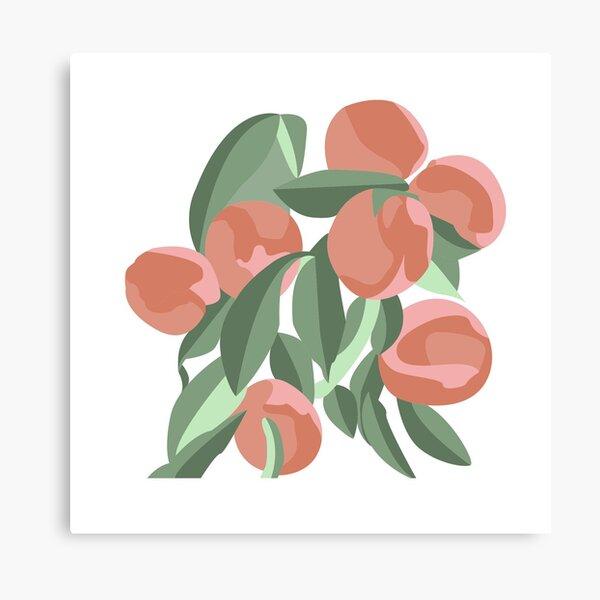 peach trees Canvas Print