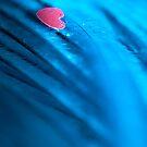 Falling for you.  by Sherstin Schwartz