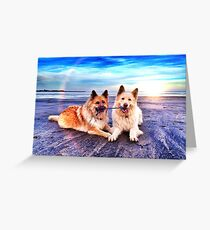 Beach Buddies Greeting Card