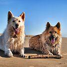 Sticky Beach by Kobianddillon