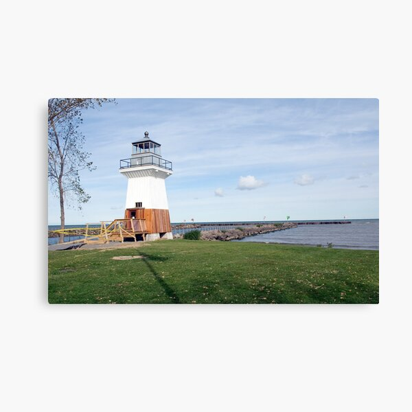 Oak Orchard Light Canvas Print