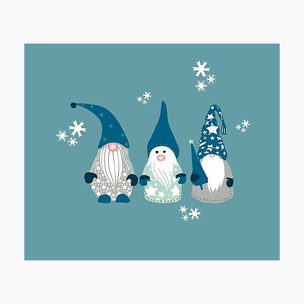 Trio of Gnomes  Photographic Print