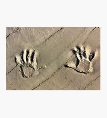 Remember Sandy Hook Photographic Print