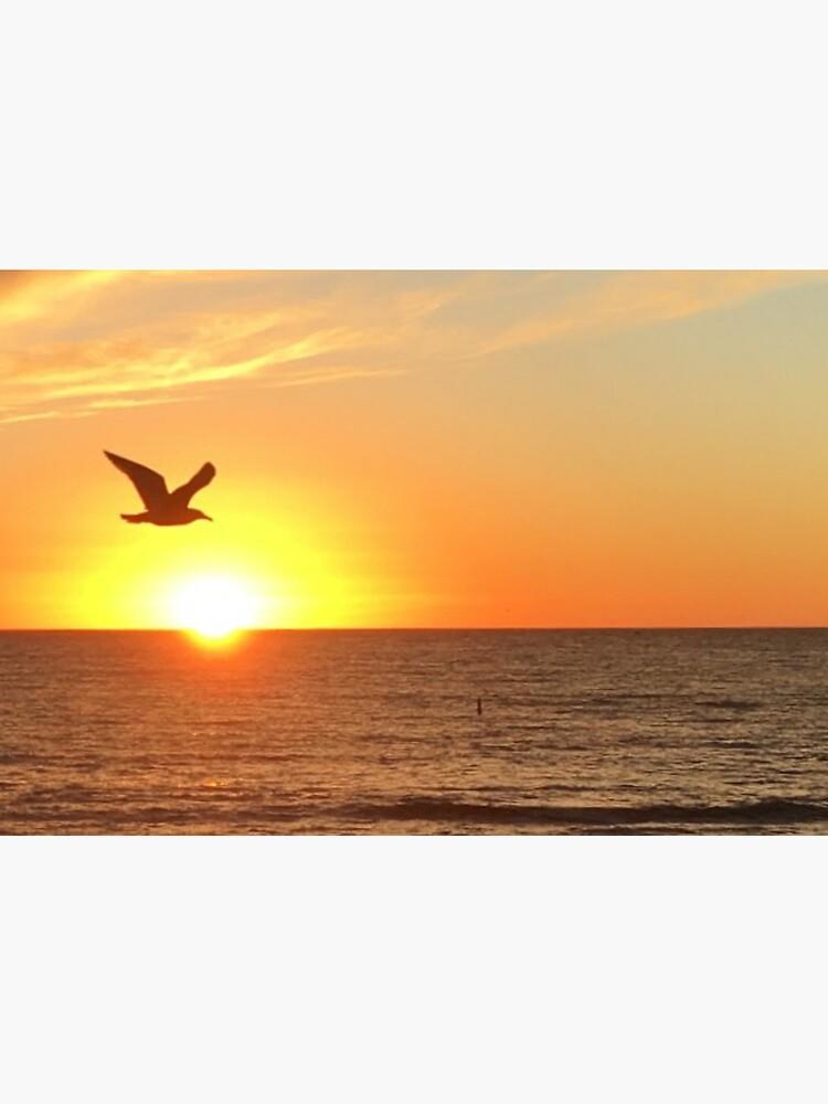 santa monica sunset by ichskabobbles