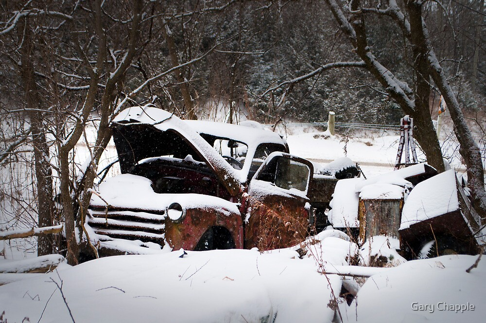 Abandoned Truck At The Tyrone Mill Pond In The Winter by Gary Chapple