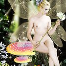 Untitled faerie 5 by David Knight