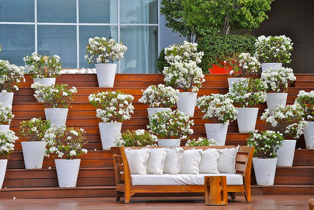 white sofa with plants by richard  webb