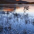 Old Man Of Storr. Winter. Isle of Skye. Scotland. by PhotosEcosse