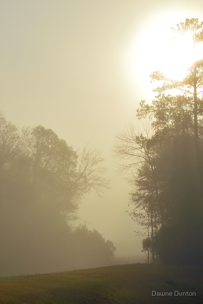 Early Morning Fog by Dawne Dunton