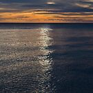 a line in the sea by paul erwin