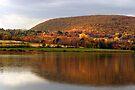 Autumn Lake, Rain and Shine by Gene Walls