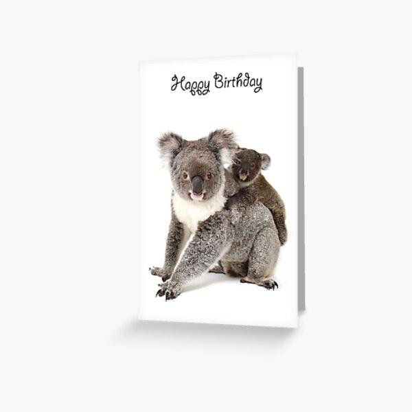 A koala Happy Birthday 1P Greeting Card