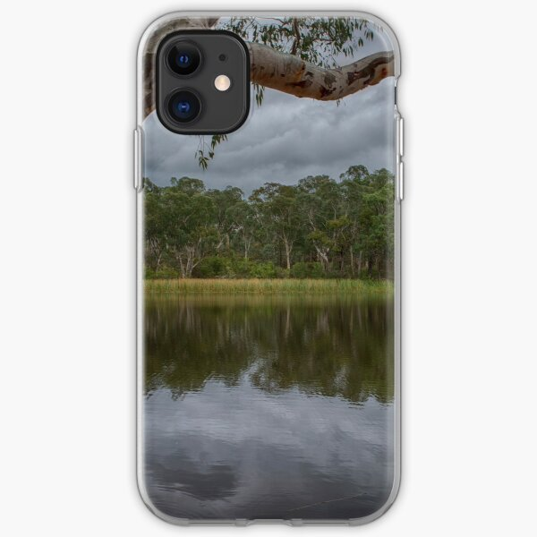 Dunns Swamp iPhone Soft Case
