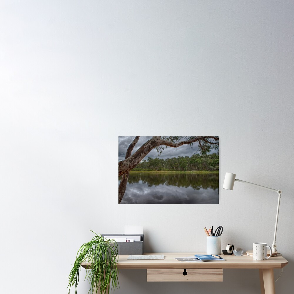 Dunns Swamp Poster