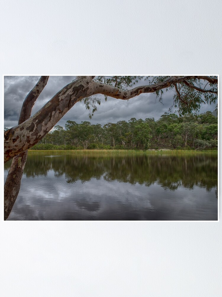 Alternate view of Dunns Swamp Poster