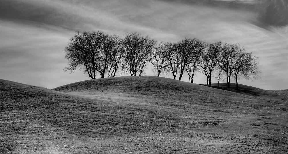 The Foothills by John  Kapusta