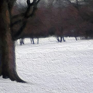 Midwest Winter by jamesdbanks1981