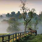 Good Morning World by Cat Perkinton