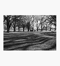 Spring in Gostwyck Photographic Print