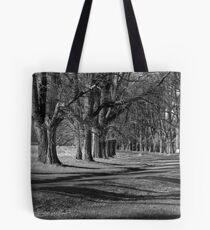 Majesty of Gostwyck Tote Bag