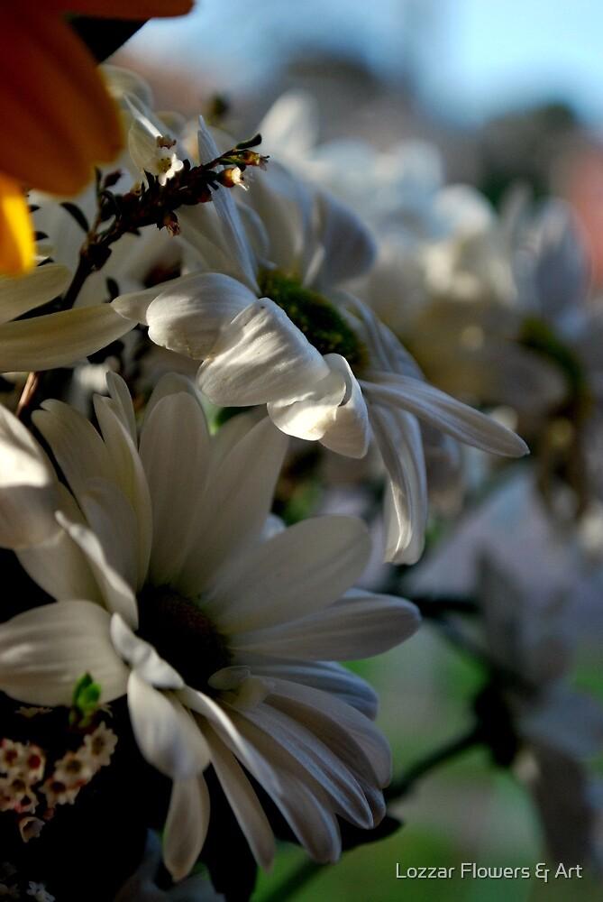 Day Dreaming by Lozzar Flowers & Art