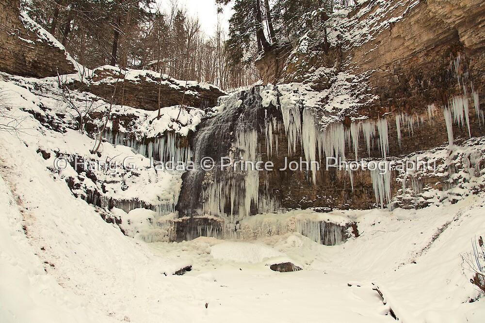 Tiffany Falls - In The Dead Of Winter © by © Hany G. Jadaa © Prince John Photography