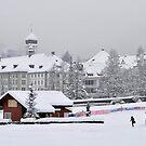Town Engelberg by Daidalos