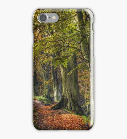 Trees at Ousbrough iPhone Case/Skin