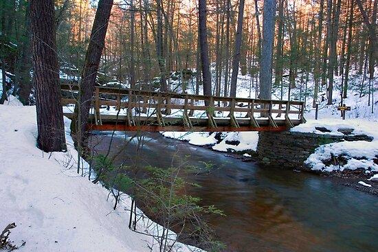 The Last Bridge by Gene Walls