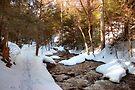 Snowy Trail Along Kitchen Creek by Gene Walls