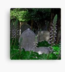 Mission Headstones Canvas Print