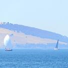 Sunday Sailing by Anthony Davey