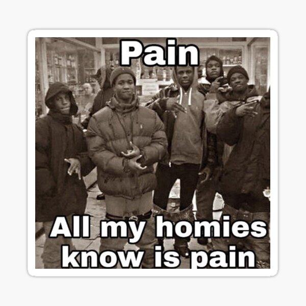 All My Homies Hate Simps Make A Meme