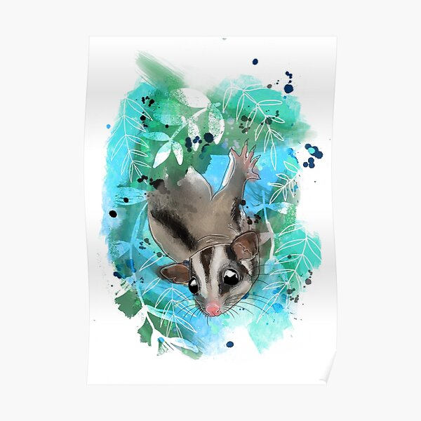 Sugar glider in the leaves Poster