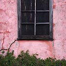 Isolated Window (Vertical) by David Kocherhans