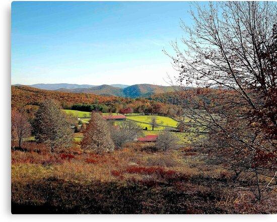 Mountain Farm in Fall by vanceadkins