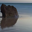 The Rock by paul erwin