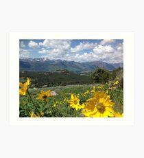 Beartooth Blooms Art Print